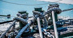 2019 - Taiwan - Kaohsiung - 16 - Knotish (Ted's photos - For Me & You) Tags: 2019 cropped kaohsiung nikon nikond750 nikonfx taiwan tedmcgrath tedsphotos vignetting bollards ropes rope chain chains chainlink