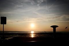 Wimereux (GLYA (busy)) Tags: plage beach sundown soleilcouchant canicule anthropocene