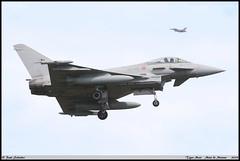 """EUROFIGHTER F-2000A  36-46 MM7315 36STORMO 12GRUPPO Tiger Meet """"Mont de Marsan"""" mai 2019 (paulschaller67) Tags: eurofighter f2000a 3646 mm7315 36stormo 12gruppo tiger meet montdemarsan mai 2019"""
