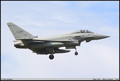 """EUROFIGHTER F-2000A  36-35 MM7313 36STORMO 12GRUPPO Tiger Meet """"Mont de Marsan"""" mai 2019 (paulschaller67) Tags: eurofighter f2000a 3635 mm7313 36stormo 12gruppo tiger meet montdemarsan mai 2019"""