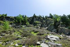 Hike from Plan de l'Aiguille to Montenvers @ Grand Balcon Nord @ Chamonix