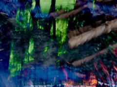 2019-06-23 18.34.54 - Glædesblus, Uge 25, Sankt Hans, Assentoft, Randers - P6230058 - © Anders Gisle Larsson