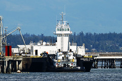 Heading Out Of The Harbor (planephotoman) Tags: islandadventures islandexplorer5 111 portlandor atb 530 moored anacorteswa tankbarge 2017 articulatedtugbarge fidalgobay harleymarine morgancityla whalewatchtour edwarditta capsantewaterway conradshipyard 1275858 marathonanacortesrefinery hullc1165 hullc1148 1277291 9840740 368013040 wdj8094 toddeprophet