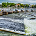THE SALMON WEIR IN GALWAY [PHOTOGRAPHED AUGUST 2016]-154403