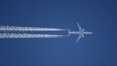Turkish Airlines / Boeing 777-3F2ER / TC-JJL (Micha_87) Tags: 777 boeing 777300 777300er 7773f2er tcjjl turkish turkishairlines istanbul amsterdam istanbulairport ist ltfm ams eham schipholairport amsterdamairport schiphol jena thuringia thüringen deutschland germany