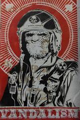 Street Art (michael_hamburg69) Tags: hamburg germany deutschland streetart urbanart stencil wall mittenimwald artist künstler altona deathforce planetoftheapes planetderaffen helmet