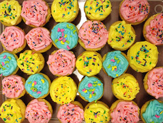 Bosses who bake are the best (Ruth and Dave) Tags: cake cupcakes icing iced bright sprinkles sweet food treats pink blue yellow
