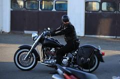 GKE-3344 (GKE/photos) Tags: reykjavík iceland biker motorbike sniglaheimilið sniglar