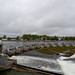 THE SALMON WEIR IN GALWAY [PHOTOGRAPHED JULY 2019]-154431