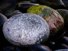Stones II (Fjällkantsbon) Tags: kallviken ångermanland sverige högakusten evamårtensson bönhamn angermanland hogakusten nordingrå västernorrlandslän stones rocks ontheshore coast highcoast