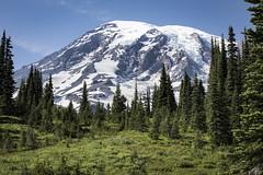 Mt Rainier from Paradise (EricEwing) Tags: mountrainier mtrainiernationalpark mountrainiernationalpark paradiselodge washingtonstate mountain