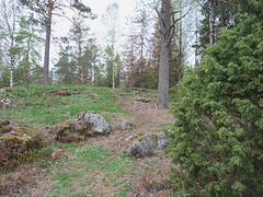 IMG_20190511_195004edit (mtbboy1993) Tags: trail sti forest skog langesskanse langnes askim indreøstfold østfold norway norge opencamera rawtherapee
