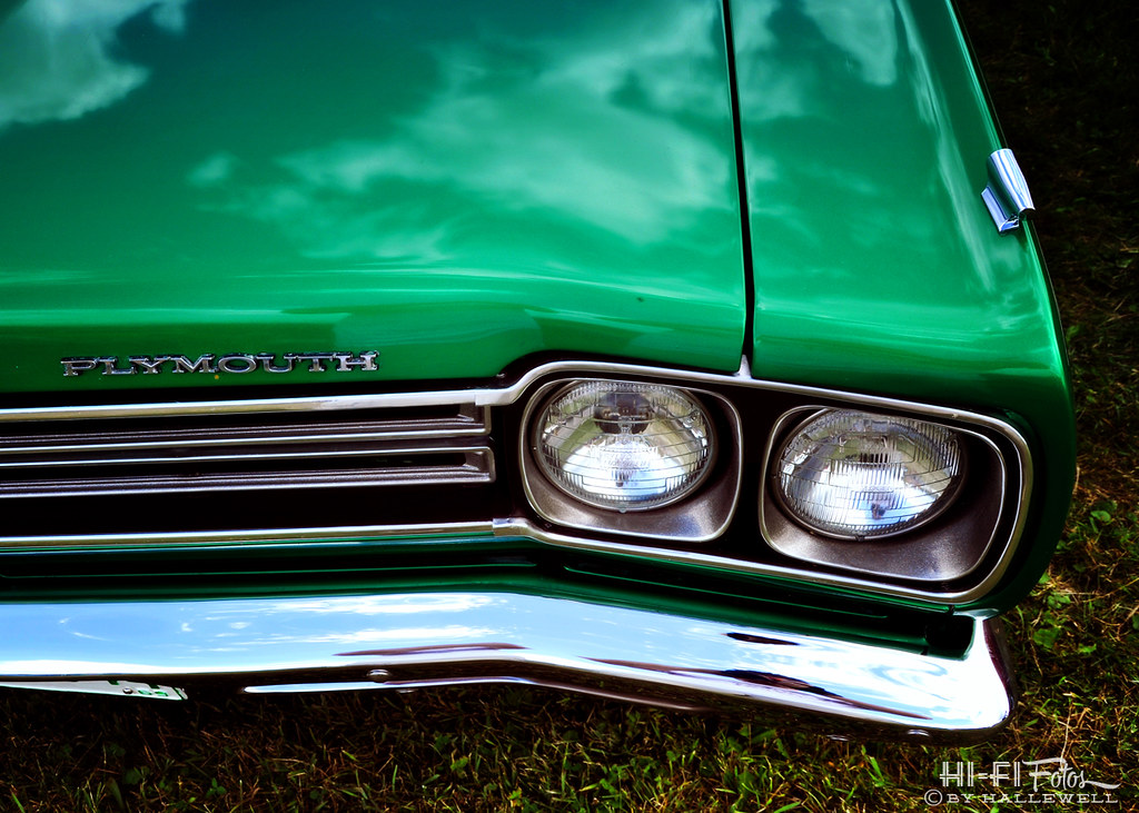 The World's Best Photos of green and roadrunner - Flickr Hive Mind