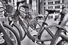 Citibike Broadway Flatiron (sjnnyny) Tags: afsnikkor1635f40edgvr nyc manhattan bikeshare madsionsquare urban city d750 sjnnyny stevenj nomad flatiron streetphoto broadway