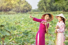 Vietnamese girls are inviting friends to look at the lotus flowers. Vietnamese dress with pink lotus flowers. Female boating on lakes harvest water lilies. (pomp_jaideaw) Tags: vietnamese dress beautiful girl lotus traditional flower asian vietnam pink cute female asia beauty portrait women costume nature people wearing dai young woman happy fashion travel outdoor lady culture hat green holding park ao person water smile lifestyle bicycle background pretty happiness tourism wooden national boat garden field summer happyplanet asiafavorites