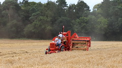 Cutting Barley (Duck 1966) Tags: allischalmers combineharvester harvest weeting barley