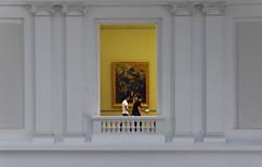 Palais des beaux-Arts-Lille (Chocolatine photos) Tags: musée blanc jaune photo photographesamateursdumonde pdc pastel makemesmile minimaliste palais beauxarts lille flickr nikon