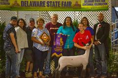 2019 DDA_Delaware State Fair-108 (agriculturede) Tags: delawarestatefair livestockextravaganza animals grandchampion lamb livestock sheep showing youth