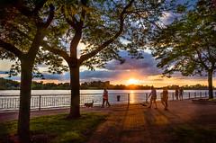 The Dog Days... (Neil Cornwall) Tags: 2019 amherstburg canada detroitriver july navyyardpark ontario summer sunset u