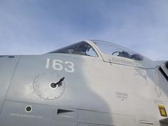 "Douglas A-4N Skyhawk 8 • <a style=""font-size:0.8em;"" href=""http://www.flickr.com/photos/81723459@N04/48370760311/"" target=""_blank"">View on Flickr</a>"