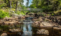 A bridge between Norway and Sweden (Thor Edvardsen) Tags: elv elgå river water waterfall border norway norge nature nordic flag sweden sverige elgåfossen østfold västragötalandslän