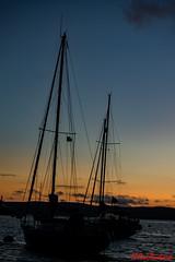 Sunset Rigging (red.richard) Tags: yachts rigging sunset sky sea scotland nikon d3300 cof089 cof089mari cof089uki cof089babe cof089hole cof089dmnq cof089chri