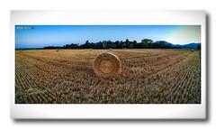 Soultz - Haut Rhin (jamesreed68) Tags: soultz hautrhin paysage nature alsace grandest 68