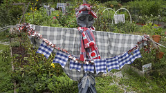 Scarecrow (DayBreak.Images) Tags: suburban atlanta georgia gwinnettcounty lilburn garden scarecrow canondslr canoneflens lightroom