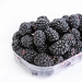 Fresh Blackberries in the plastic box isolated above white background