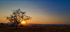 Lever de soleil à Courpière (Glc PHOTOs) Tags: glc5607dxo sunrise lever de soleil nikon d850 nikkor 24mm f28