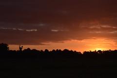 Sonnenaufgang, gesehen von Külken; Bergenhusen, Stapelholm (12) (Chironius) Tags: stapelholm bergenhusen schleswigholstein deutschland germany allemagne alemania germania германия niemcy morgendämmerung sonnenaufgang morgengrauen утро morgen morning dawn sunrise matin aube mattina alba ochtend dageraad zonsopgang рассвет восходсолнца amanecer morgens dämmerung gegenlicht himmel sky ciel cielo hemel небо gökyüzü wolken clouds wolke nube nuvole nuage облака