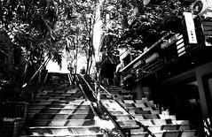stairs up (n.okyayli) Tags: istanbul karaköy canonav1 ilford film 35mm analog blackandwhite bw monochrome