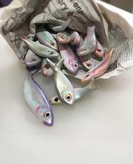 Fresh! (sandra djurbuzovic) Tags: terracotta acryl newspaper sculpture fish fresh sandradjurbuzovic budva montenegro art exhibit maliformat smallformat crnagora izlozba izlozbamaliformat maliformat2019 pizana ribe ribice
