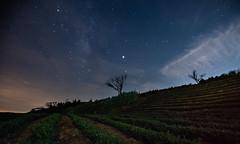Stars/PingLin (Changyou Lee) Tags: taiwan 茶園 銀河