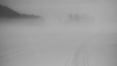 Ice mist (a.l.bsk) Tags: mist туман landcape ladogalake winter пейзах зима зимнийпейзаж bw чб