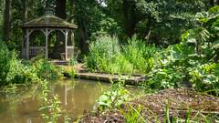 The Bog Garden (Brian Negus) Tags: garden summer reflectionwater tree boggarden nationaltrust gunnera boardwalk summerhouse gazebo coughtoncourt pool waterplants