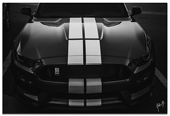 GT350 Front Sinister (showtm490) Tags: johnbelknap a7iii alpha art ford forsyth forsythga ga gt350 georgia mustang shelby sony tamron tamron2875mmf28 wheelchairphotographer