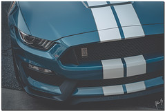 GT350 Front Side (showtm490) Tags: johnbelknap a7iii alpha art ford forsyth forsythga ga gt350 georgia mustang shelby sony tamron tamron2875mmf28 wheelchairphotographer