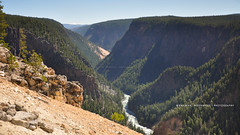 Grand Canyon of the Yellowstone! (peddhapati) Tags: park travel summer vacation usa holiday hot nature water beautiful landscape photography spring nikon famous scenic grand canyon national waterfalls yellowstone wyoming dslr volcanic prismatic geysers 2019 d90 bhaskar peddhapati river outdoors valley