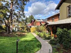 A Cottage Cluster in Oregon (Sightline Institute) Tags: cottage cottages missing middle housing home homes gentle density missingmiddle gentledensity