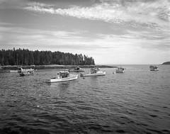 lobster boats, harbor, Spruce Head, Maine, Camera- Travelwide 90. Film- Kodak Tri-X 320. Developer- Pyrocat-MC, 7.16.19 (steve aimone) Tags: lobsterboats harbor sprucehead maine travelwide90 kodaktrix320 pyrocatmc 4x5 film blackandwhite monochrome monochromatic seascape