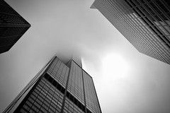 Where is the Sears / Willis Tower ? - Chicago IL (Meridith112) Tags: summer blackandwhite bw mist chicago building june fog skyscraper mono illinois nikon midwest il michiganavenue cookcounty skyscrapper 2019 nikon2485 nikond610 willis sears searsbuilding willisbuilding height pov headintheclouds sky architecture glass searstower willistower