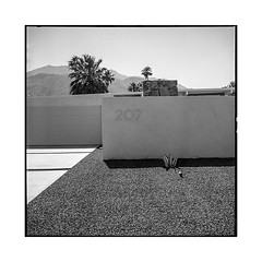 207 • palm springs, ca • 2018 (lem's) Tags: 207 number street wall house midcentury rue maison mur numero palm springs ca california rolleiflex t architecture