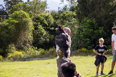 Bird Trainer Presenting a Wedge-tailed Eagle to an Audience (do_japan) Tags: australia queensland people man handler trainer bird plumage feather bunjil aquila audax beak animal lamington national park tree forest nature show prey oreilly crowd glove boy wedgetailed eagle wedge tailed audience