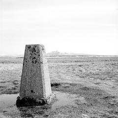 Gragareth (ronet) Tags: bw film mediumformat blackwhite scanned 100iso hasselblad500cm ilforddelta100 homedeveloped rollfilmweek yorkshiredalesnationalpark