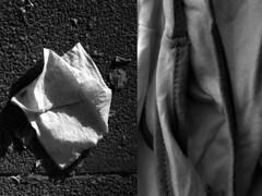 37 Rosa Gallego (espaciosparaelarte) Tags: arte artecontemporáneo bellasartes blancoynegro cultura comunidaddemadrid creación exposición exposiciones espaciosparaelarte calle universos vuelo paloma hoja agua gota mano sombra ojo papel detalle contraste díptico davidjiménez cielo