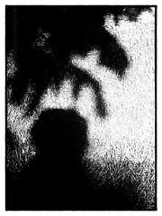 24 Enrique Mezquita (espaciosparaelarte) Tags: hoja blancoynegro calle agua bellasartes arte paloma gota cultura vuelo exposición comunidaddemadrid exposiciones universos creación artecontemporáneo espaciosparaelarte detalle ojo sombra cielo contraste mano papel díptico davidjiménez