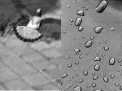 18 Jesus Caballero (espaciosparaelarte) Tags: arte artecontemporáneo bellasartes blancoynegro cultura comunidaddemadrid creación exposición exposiciones espaciosparaelarte calle universos vuelo paloma hoja agua gota mano sombra ojo papel detalle contraste díptico davidjiménez cielo