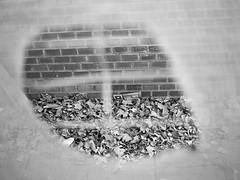 09 Alfonso C. Orive (espaciosparaelarte) Tags: arte artecontemporáneo bellasartes blancoynegro cultura comunidaddemadrid creación exposición exposiciones espaciosparaelarte calle universos vuelo paloma hoja agua gota mano sombra ojo papel detalle contraste díptico davidjiménez cielo