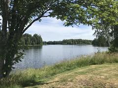 Svartån (greger.ravik) Tags: husvagnssemester semester resa nederländerna2019 å vattendrag river nature beautiful sweden sverige svartån flod